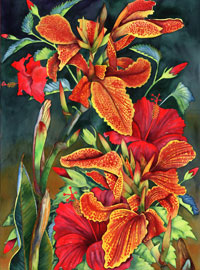 135 - Red Hibiscus With Cannas