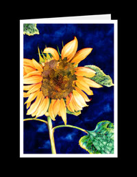 FL03_175-Sunflower-With-Blue-Sky